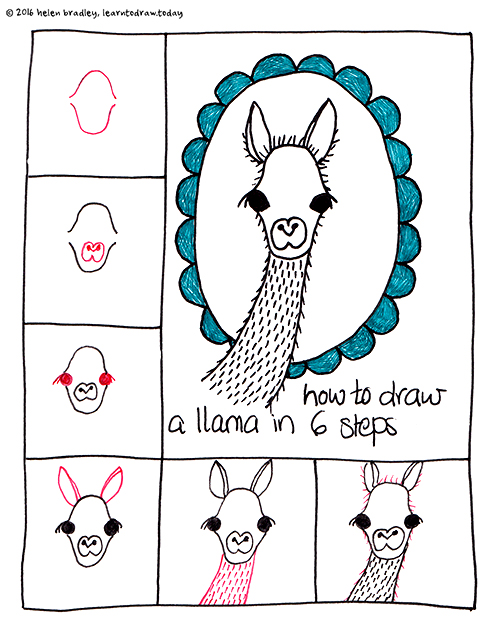 Learn To Draw A Cute Llama In 6 Steps Learn To Draw