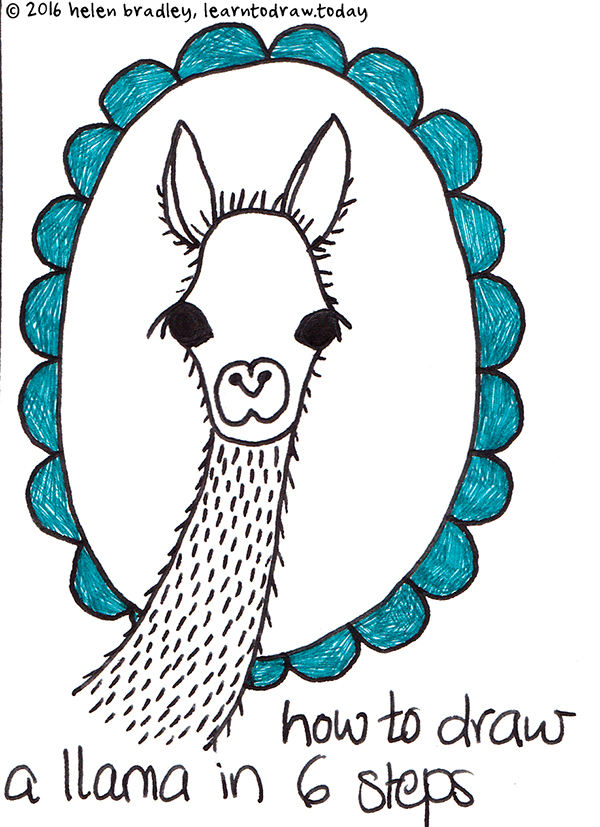 draw a super cute llama step by step