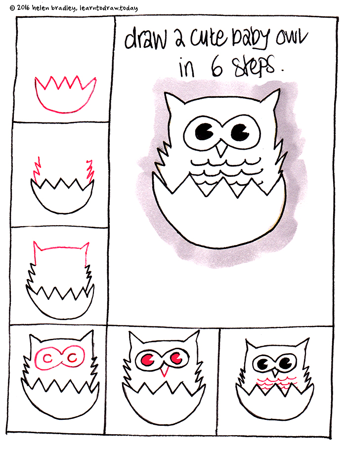Learn to draw a baby owl in 6 steps learn to draw for Things to draw for beginners step by step