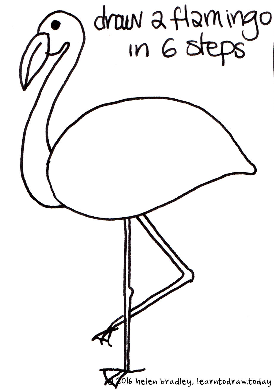 Learn To Draw A Flamingo In 6 Steps Learn To Draw